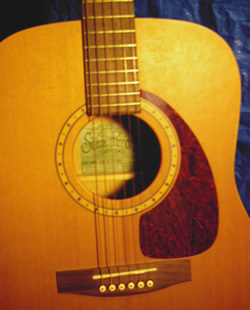Look Up A Number >> Guitar Collection - Simon & Patrick SP6